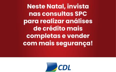 CONSULTAS SPC: UMA IMPORTANTE FERRAMENTA PARA EVITAR FRAUDES NO COMÉRCIO